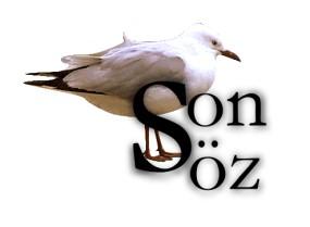 http://www.havuz.de/YAPITLARIMIZ/MARTILAR_MAVi_UCAR__ilk_sayfa_/sonsoz/yazilar__son_soz_.jpg